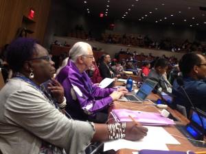 Monica Walters-Field at UNPFII 2015