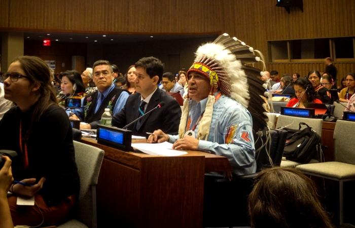 Joint statement at UNPFII 2016