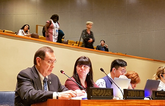 Joint Statement on Sustainable Development - UN Permanent Forum on Indigenous Issues