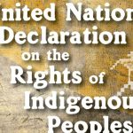 Commentary - UN Declaration on the Rights of Indigenous Peoples