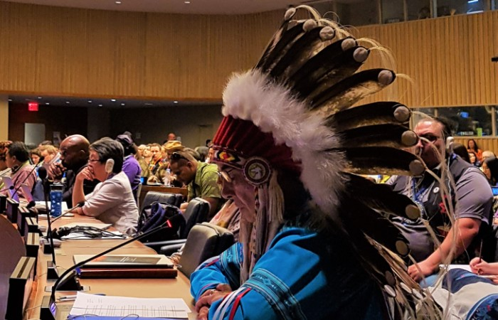 Chief Willie Littlechild: Indigenous Peoples and the Right to Self-Determination