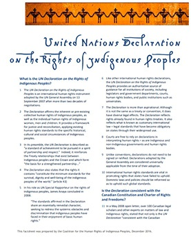 Our resources include a fact sheet on the United Nations Declaration on the Rights of Indigenous Peoples
