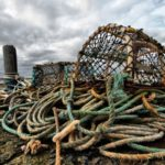 Mi'kmaw fishing rights - Coalition for the Human Rights of Indigenous Peoples